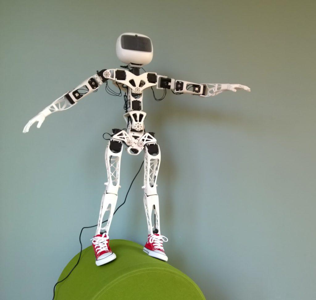 Poppy_humanoid_acrobat